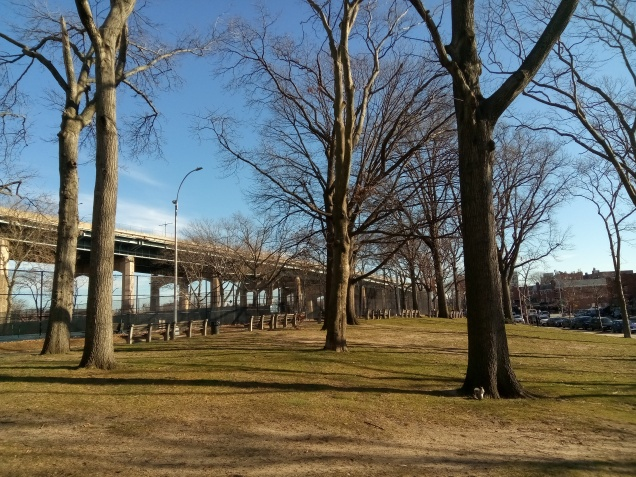 astoria park, between hoyt and the tennis courts, looking east. triboro bridge on the left. empty scene of the trees and grass. blue skies and sunny